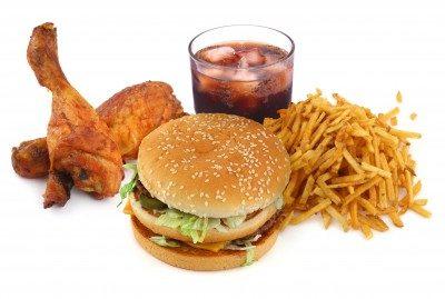 High fat food – friend or foe
